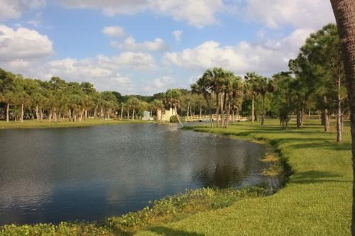 Dog Park In Miami Lakes