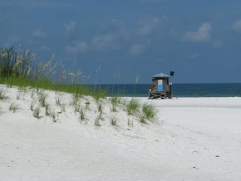 clearwater beach fl lifeguard stand by dune