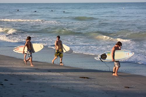 surfing on sunset beach