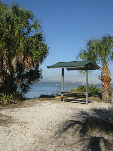 A secluded picnic table over-looking Boca Ciega Bay in St Pete FL.