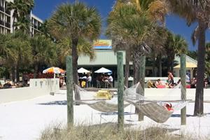 harrys beach bar st pete beach